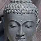 Le cœur  des enseignements du Bouddha